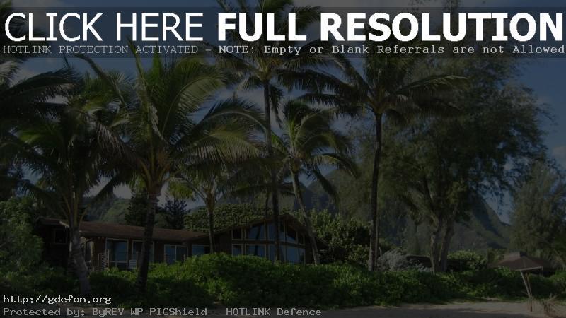Обои Пальмы, дом, пляж, лето фото картики заставки