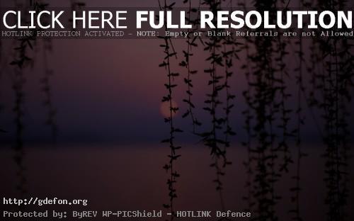 Обои Нежный пурпурный закат — природы на ваш рабочий ст фото картики заставки