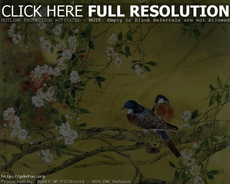 Обои Весна, птицы, ветви, цветы фото картики заставки