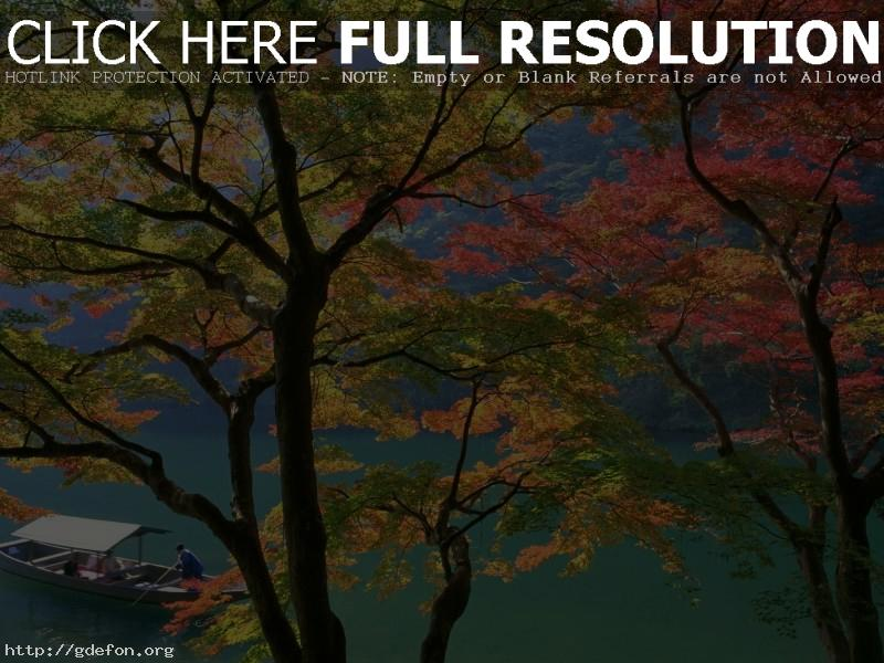 Обои Япония, осень, лодка фото картики заставки