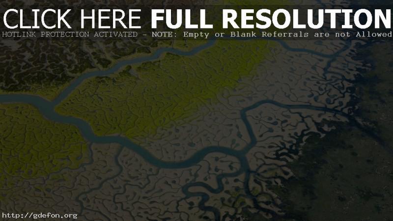 Обои река, притоки, болота фото картики заставки