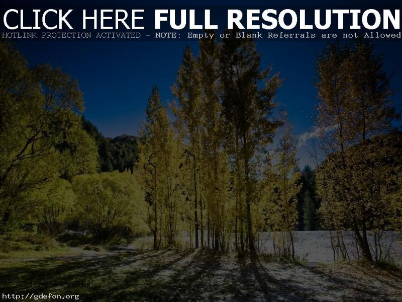 Обои Деревья, свет, осень фото картики заставки