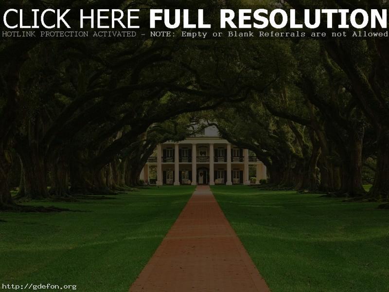 Обои Деревья, дорожка, дом фото картики заставки