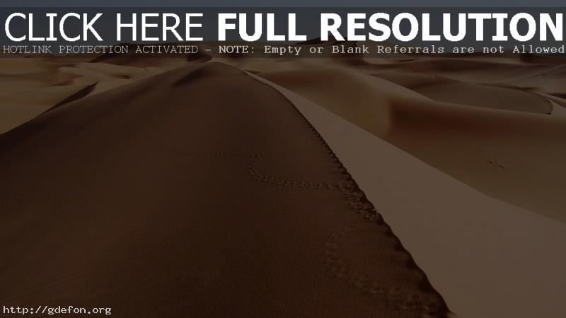 Обои Пустыня, песок, следы фото картики заставки