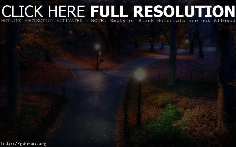 Обои Ночь, парк, дороги фото картики заставки