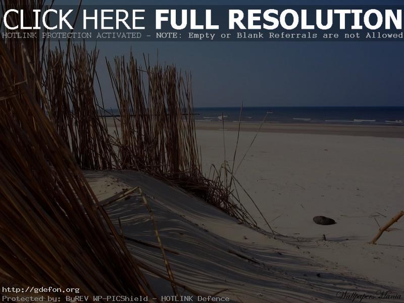 Обои Песок, вода, пляж фото картики заставки