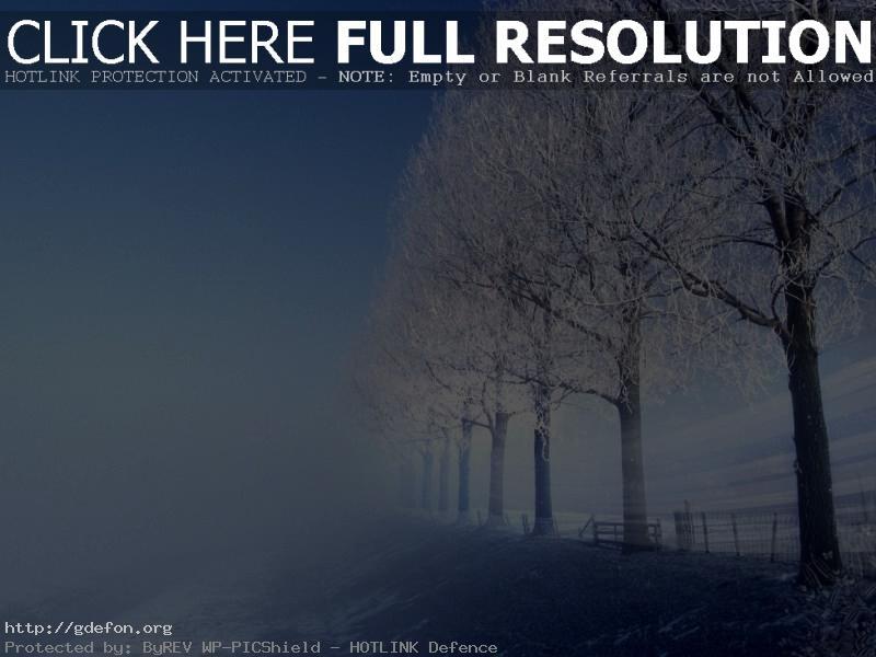Обои Зима, холод, деревья, дорога фото картики заставки