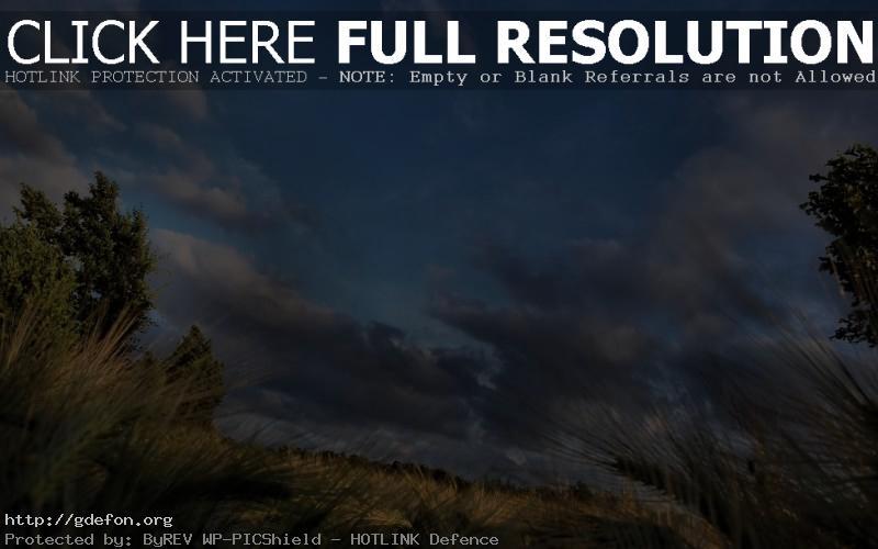 Обои Небо, поле, облака фото картики заставки