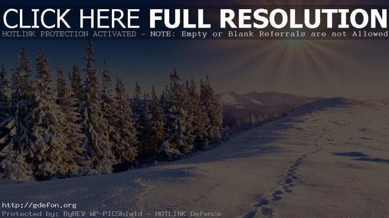 Обои Лес, зима, снег, следы, горы, небо, солнце фото картики заставки