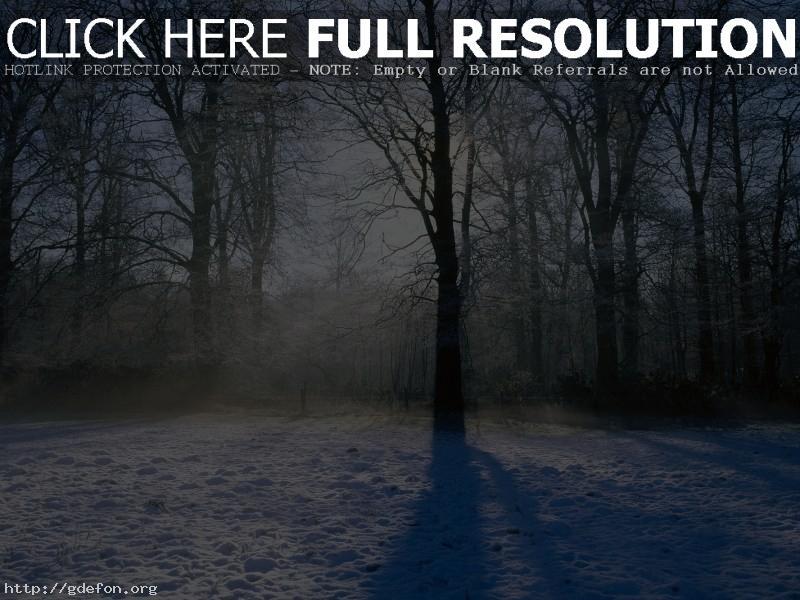 Обои Зима, снег, деревья, лучи фото картики заставки