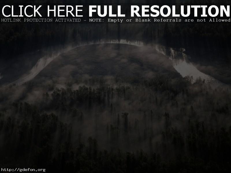 Обои река, деревья, туман фото картики заставки