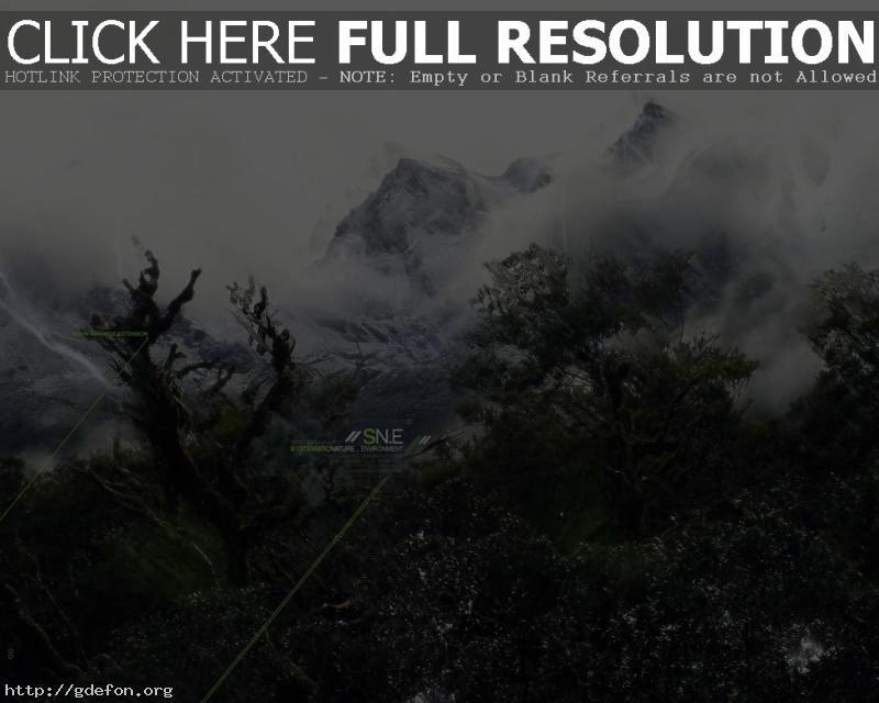 Обои Деревья, горы, туман фото картики заставки