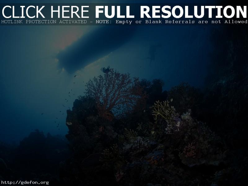 Обои дно, кораллы, аквалангист, лодка, свет фото картики заставки