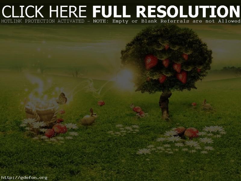 Обои Зеленый, дерево, клубника, грибы, волшебство фото картики заставки