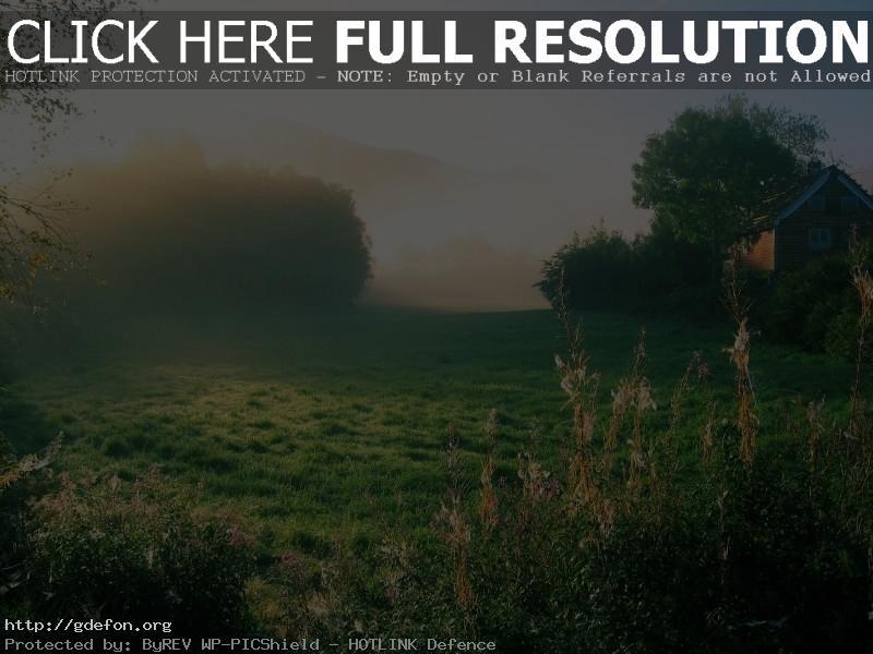 Обои Утро, трава, деревья, дом фото картики заставки