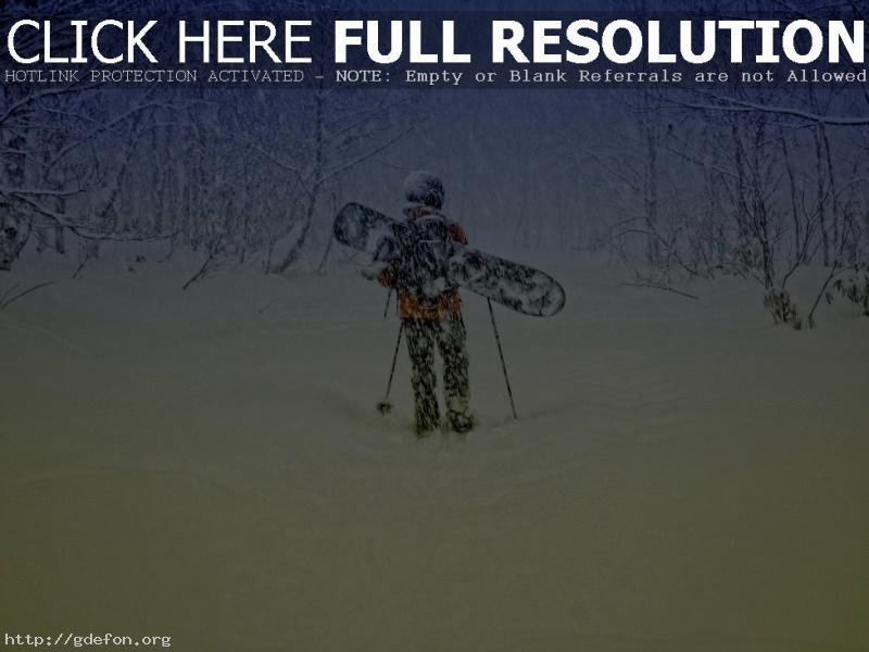 Обои зима, снег, ветер, лес фото картики заставки