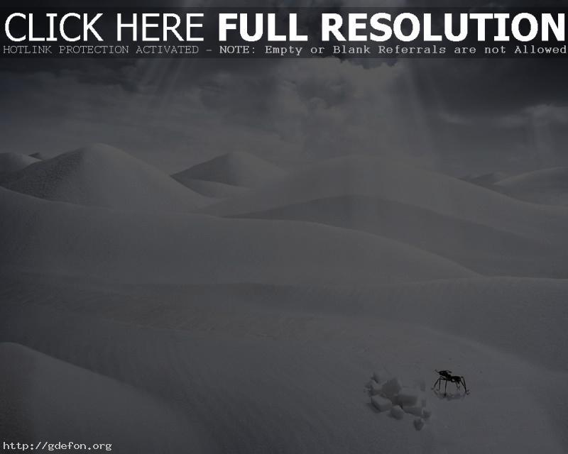 Обои Пустыня, фантазия фото картики заставки