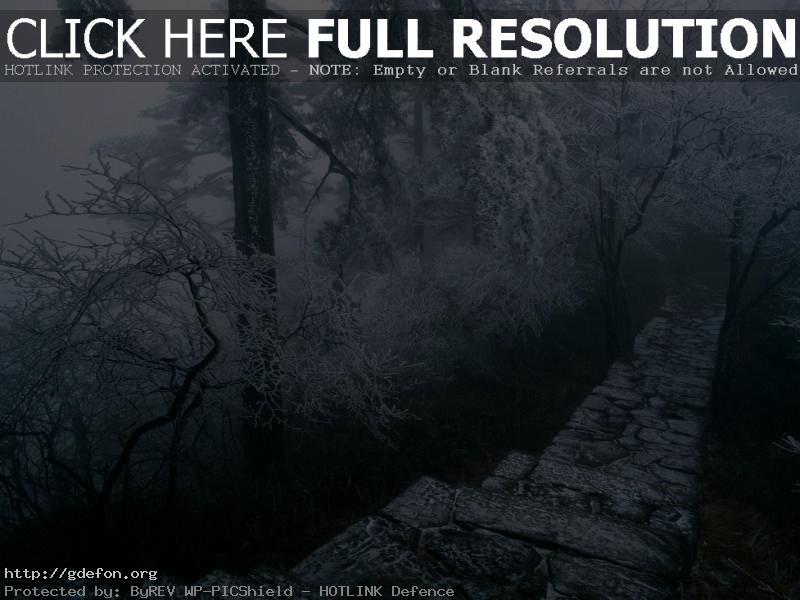 Обои Зимняя дорога в горы фото картики заставки
