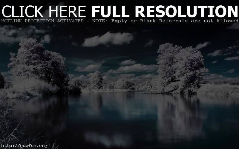 Обои Деревья, снег, вода, облака фото картики заставки