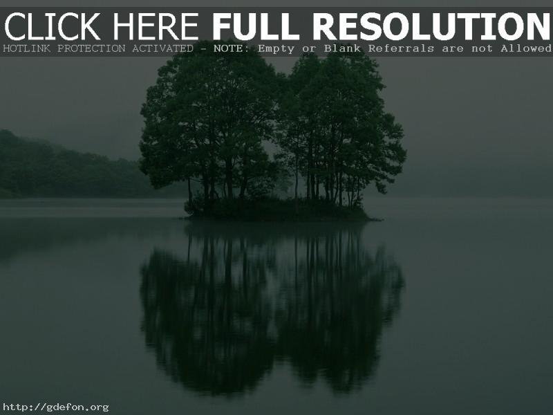 Обои Деревья, остров, отражение, озеро фото картики заставки