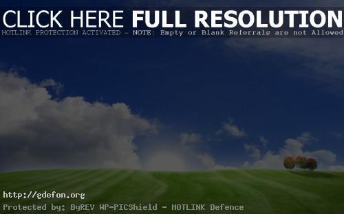 Обои Пейзажи, деревья, трава, холмы, поля, поле, небо фото картики заставки