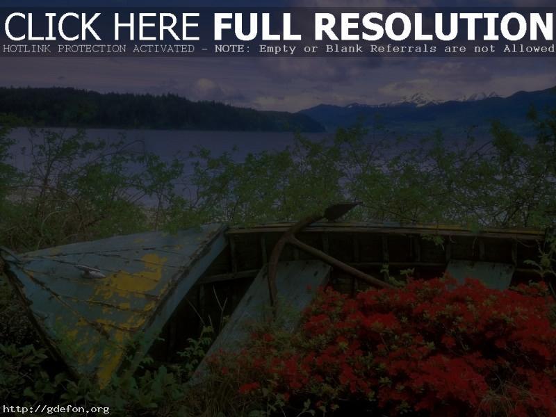 Обои лодка, канал, цветы фото картики заставки