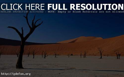 Обои В пустыне фото картики заставки