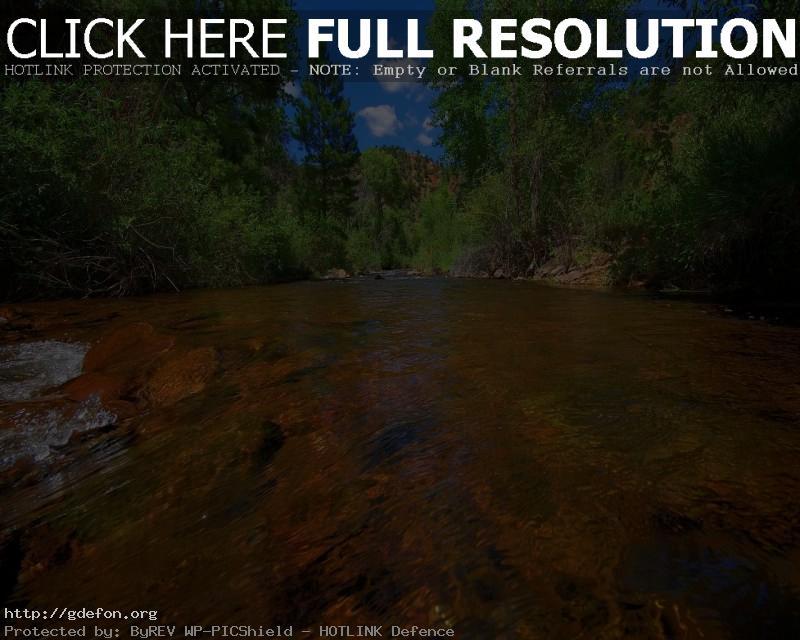 Обои Река, поток, деревья фото картики заставки