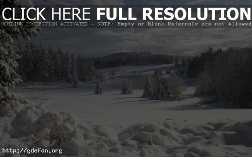 Обои зима ели озеро лед фото картики