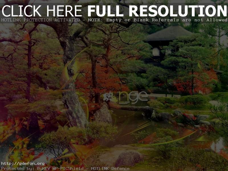 Обои Японский сад фото картики заставки