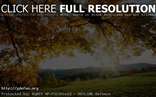 Обои Лучи октябрьского солнца фото картики заставки