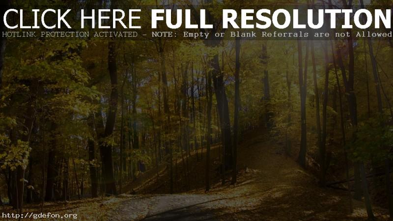 Обои Огайо, солнце, осень фото картики заставки