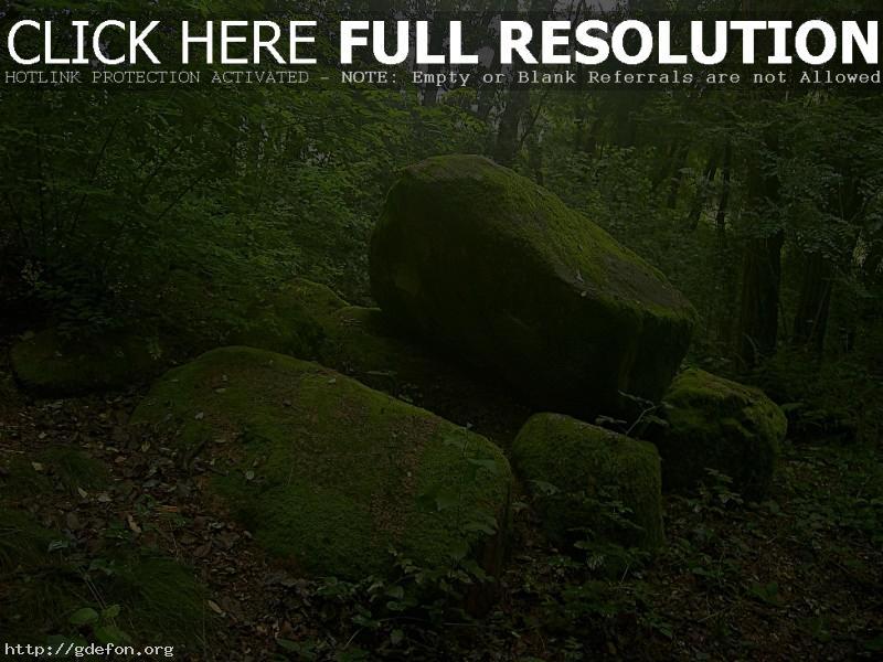 Обои Камни покрытые мхом фото картики заставки