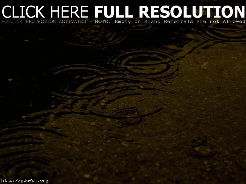 Обои Капли, вода, дождик фото картики заставки