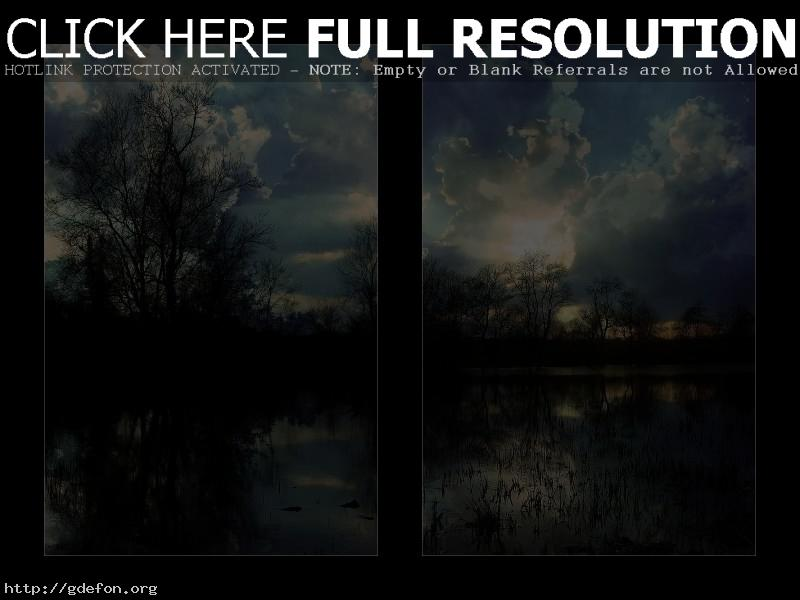 Обои облака, деревья, небо фото картики заставки
