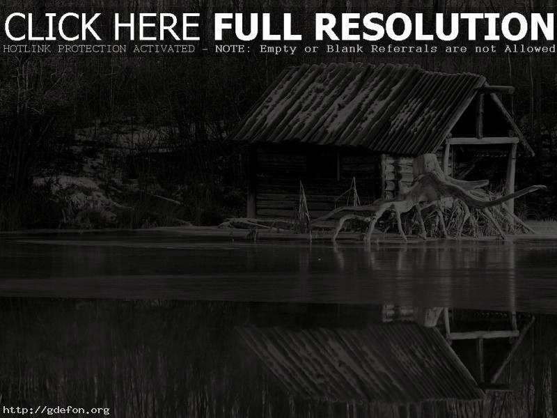 Обои Черно-белое, река, лес, причал фото картики заставки
