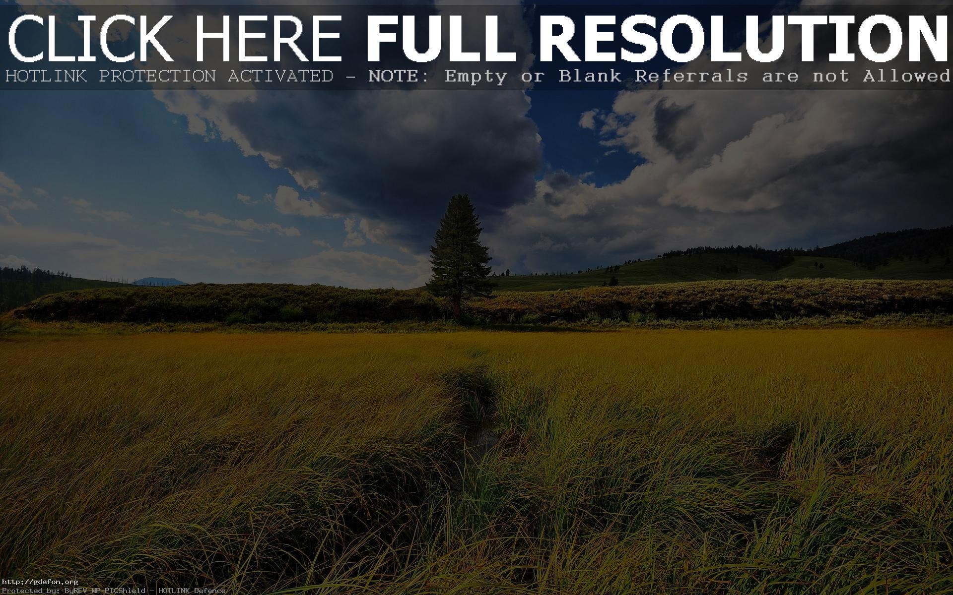 фото природа пейзаж