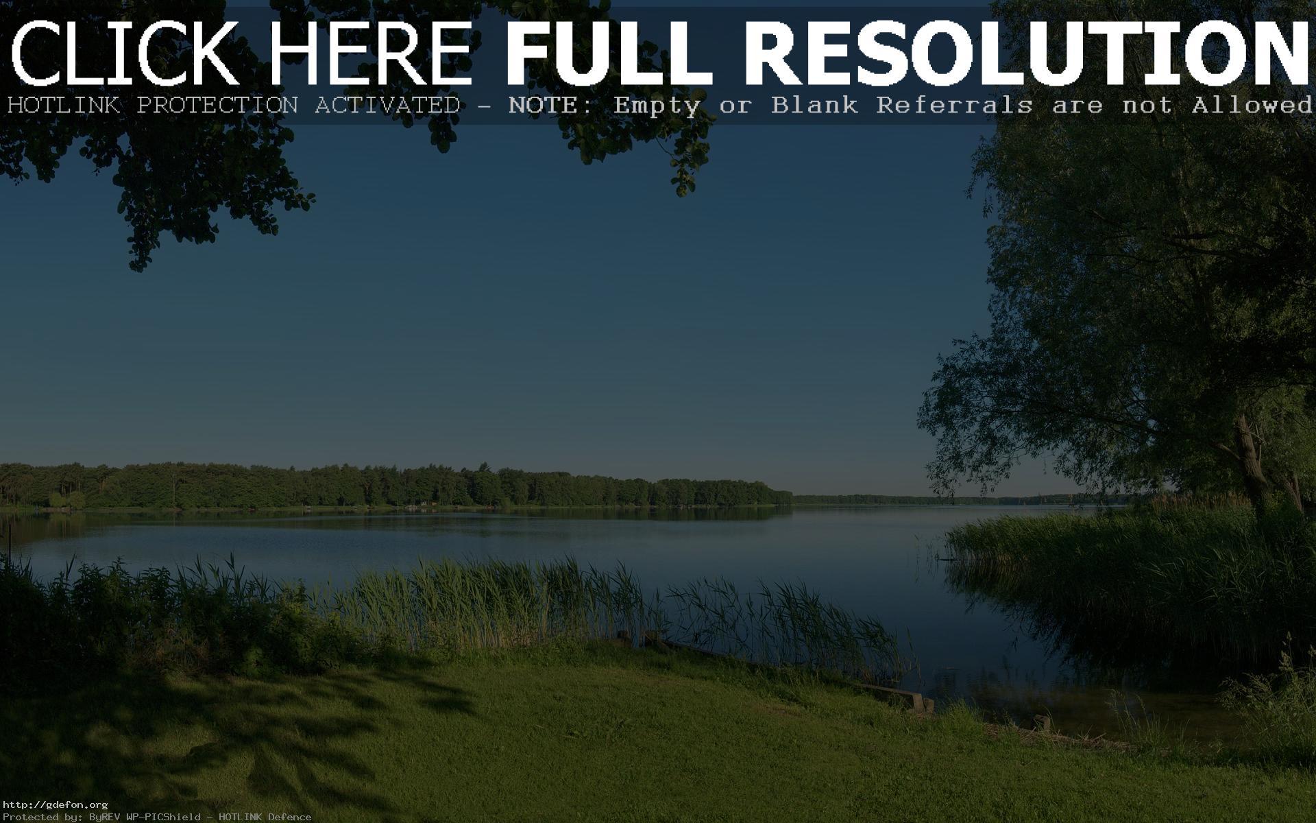 Скачать обои Лето, река, природа, деревья, трава, камыши на ...
