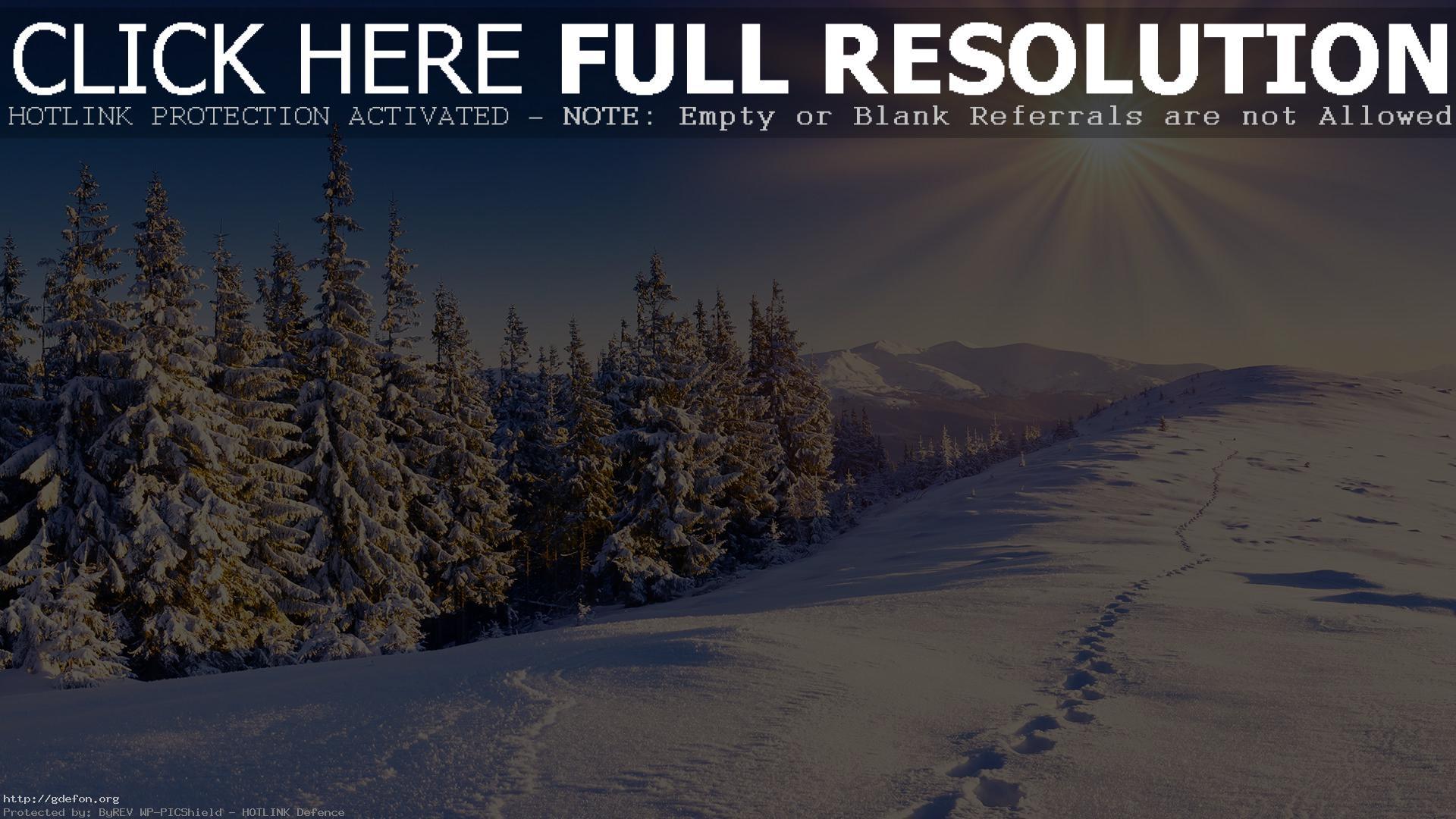 Картинки на рабочий стол зима снег лес