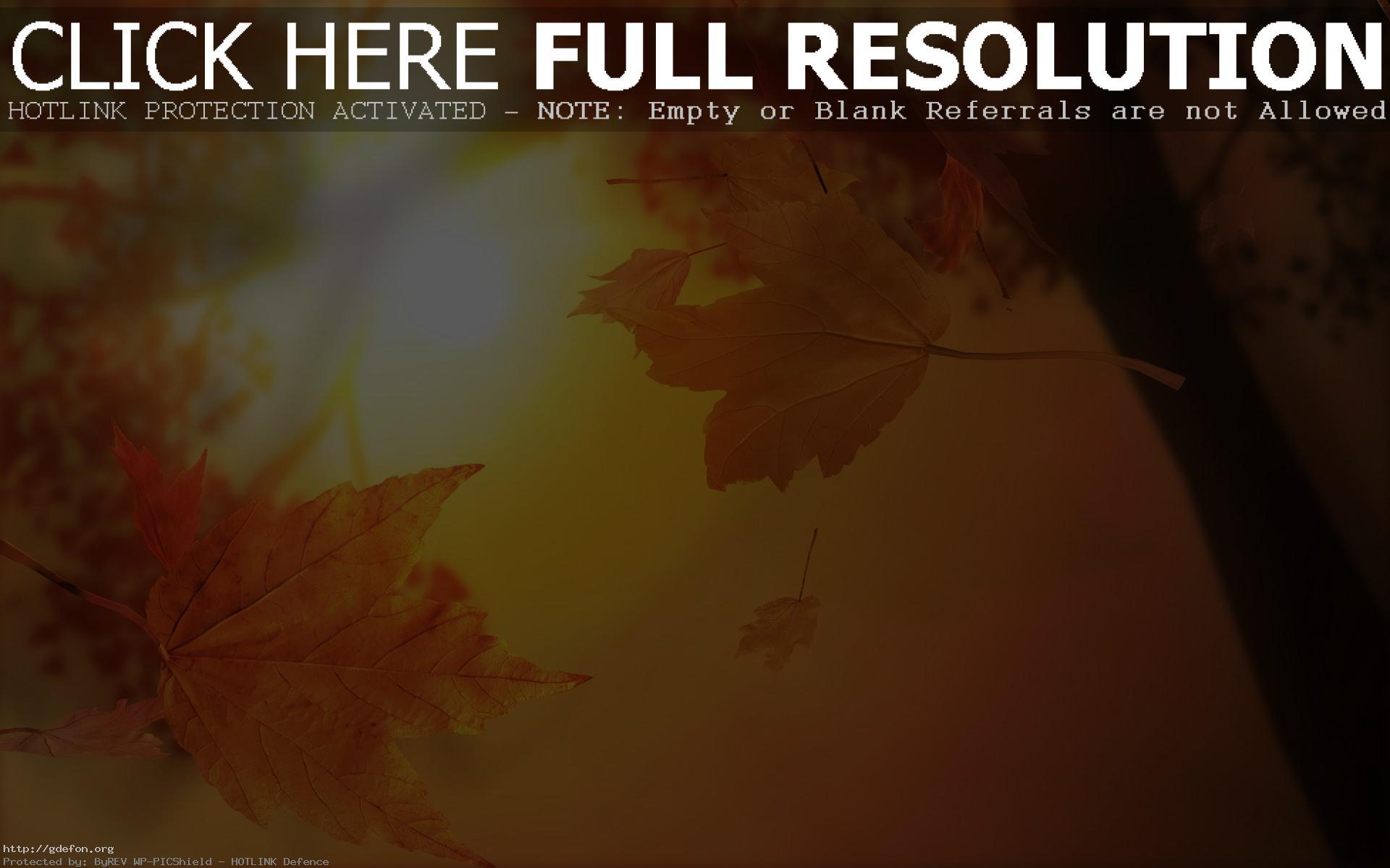 Осенний блюз скачать бесплатно mp3 плюс