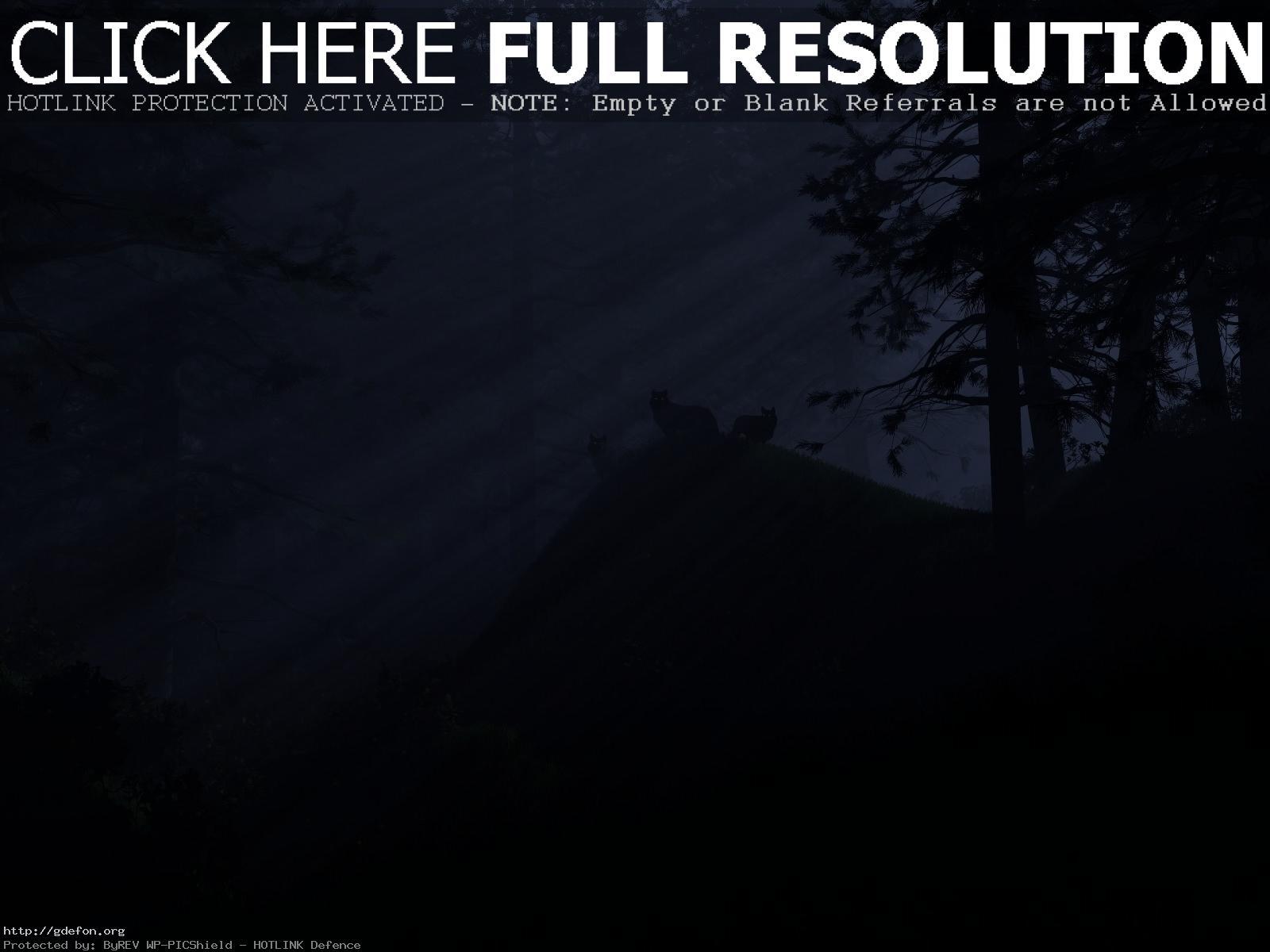 Лес волки свет ночь обои на рабочий