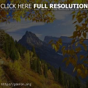 Монтана, осень, горы, деревья