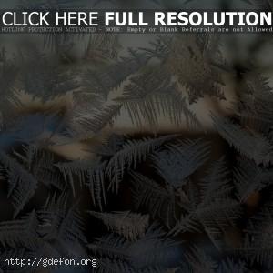 мороз на стекле