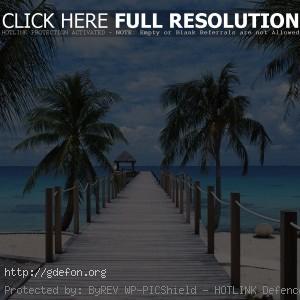 Полинезия, пирс, берег, пальмы