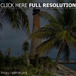 Флорида, маяк, пальмы, берег