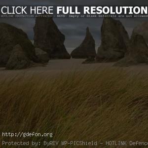 Трава, скалы, берег