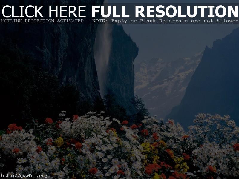 Обои Швейцария, водопад, цветы фото картики заставки