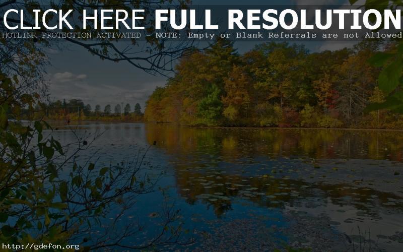 Обои озеро и деревья фото картики заставки