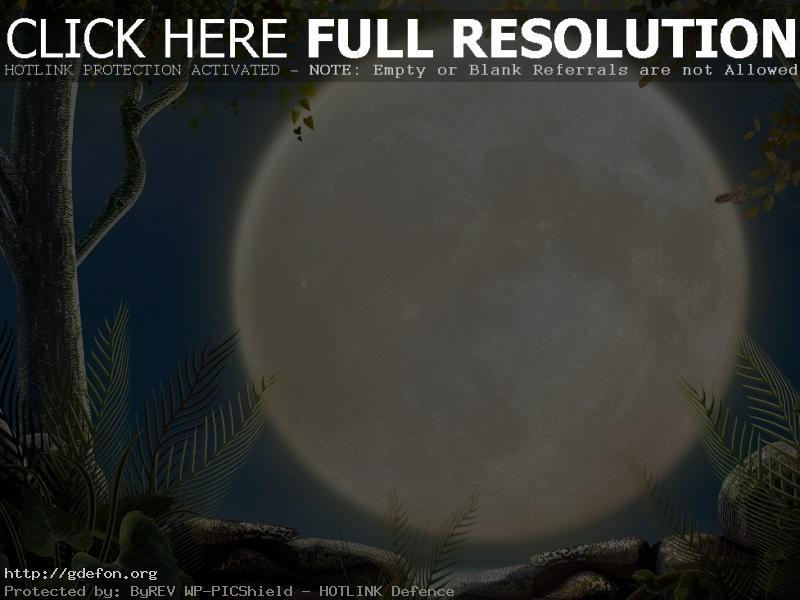 Обои Полная Луна фото картики заставки