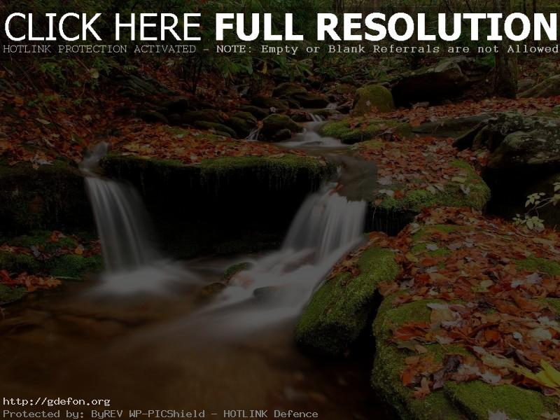 Обои Камни, листья, осень, ручей фото картики заставки